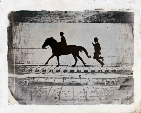 "Eadweard Muybridge Leland Stanford, Jr. on his Pony ""Gypsy""—Phases of a Stride by a Pony While Cantering 1879. Wilson Centre for Photography"
