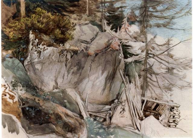 Mountain Rock and Alpine Rose by John Ruskin. 1844-49. Ruskin Foundation (RF 1395), Ruskin Library, Lancaster University. ©Ruskin Foundation.