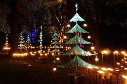 Christmas at Kew gardens. London, 2017 © Paola Cacciari (3)