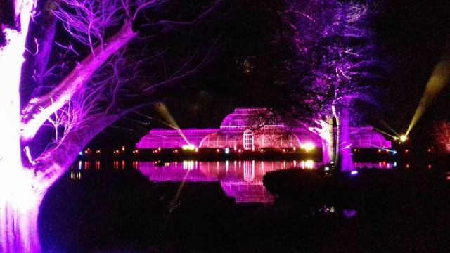 Christmas at Kew gardens. London, 2017 © Paola Cacciari