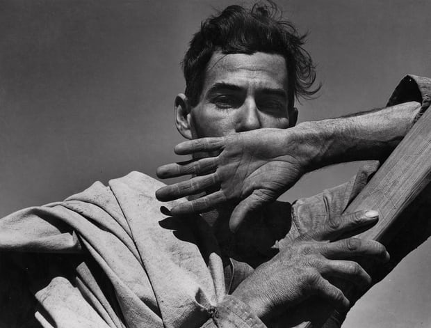 Dorothea Lange's image of a migratory cotton picker, Eloy, in Arizona, 1940. Photograph: The Dorothea Lange Collection, the Oakland Museum of California
