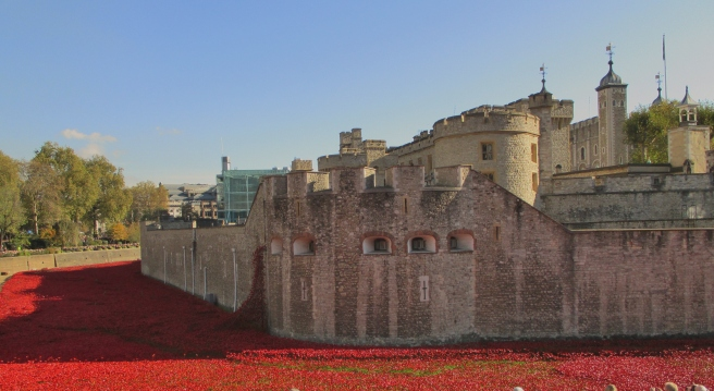 Blood Swept Lands and Seas of Red, Tower of London. London, 2014 ©Paola Cacciari