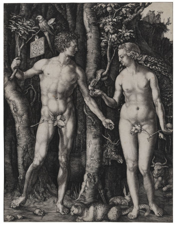Albrecht Dürer, Adam and Eve, 1504. Adam and Eve