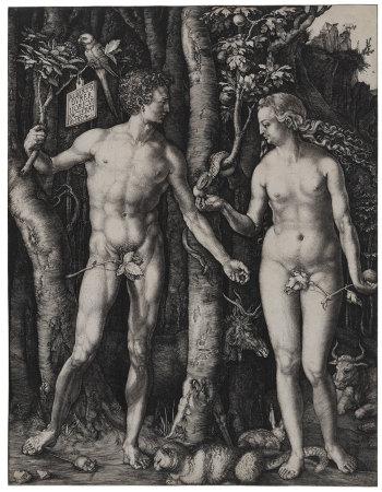 Albrecht Dürer, Adam and Eve, 1504. Adam and Eve